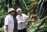 La Chine intensifie limportation de produits agricoles du Vietnam