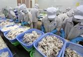 Céphalopodes : bond des exportations vietnamiennes au Japon