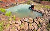 Le delta du Mékong face aux changements climatiques