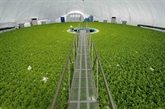 Éveiller les potentiels de l'agriculture high-tech