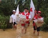 Humanitaire : le vice-PM Vu Duc Dam salue le rôle de la Croix-Rouge