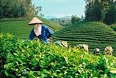 Foire internationale de l'agriculture du Vietnam 2017 à Cân Tho