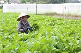 La Belgique soutient le Vietnam dans l'agriculture durable