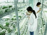 Pour que l'agriculture high-tech du Vietnam