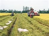 L'agriculture durable et la sécurité alimentaire - une des priorités dans la coopération au sein de l'APEC