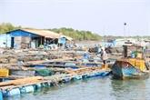 Voyage au village des huîtres de Long Son