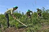 Solutions pour la mise en œuvre de la stratégie de croissance verte