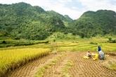 Trùng Khanh : la «Belle au bois dormant» de la province de Cao Bang