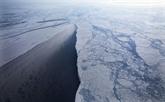 Océan Arctique : moratoire sur la pêche commerciale avant même sa possibilité