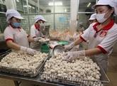 Les entreprises privées vietnamiennes à l'heure de l'industrie 4.0
