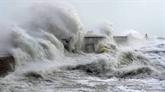 Onze Départements français en vigilance orange pour vents violents