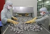 Le Vietnam table sur 10 milliards de dollars d'exportations de crevettes