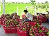L'Inde annulera sa suspension d'importation de produits agricoles vietnamiens