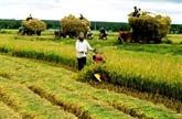 BAD : la réforme agricole, clef de la croissance économique au Vietnam