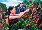 Appel à mobiliser des fonds pour le développement du Tây Nguyên