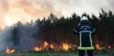 Incendies en Gironde : près de 1.000 hectares de pins détruits