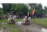 Mois du tourisme d'An Giang 2017