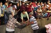 Chine et Vietnam accélèrent le développement durable de la pêche dans le golfe du Bac Bô
