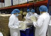 Belles perspectives pour l'exportation des meretrix sur le marché européen