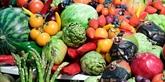 Un régime alimentaire légèrement meilleur permet de vivre bien plus longtemps