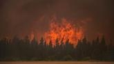 Canada : des milliers d'évacués dans les incendies en Colombie-Britannique