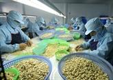Forte hausse des exportations de produits agricoles et aquatiques aux Pays-Bas