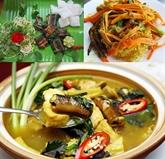 L'anguille vietnamienne