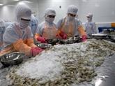 Premier semestre : les exportations de crevettes en Chine en hausse de 30%