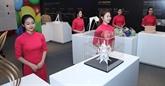 Des œuvres d'art sur le multiculturalisme exposées à Hanoï
