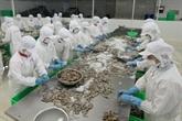Les États-Unis augmentent les taxes antidumping sur les crevettes vietnamiennes