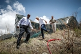 Irma : le roi des Pays-Bas en visite sur l'île ravagée de Saint-Martin