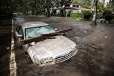 Ouragan Irma : message de sympathie du Vietnam à Cuba