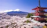 De belles expériences avec la 3e édition de Couleurs du Japon 2018