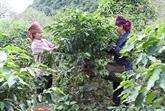 Aides au renforcement des droits économiques des femmes ethniques