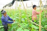 Le 13e plénum du comité central de lAssociation des agriculteurs vietnamiens