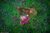 Deux photos prises au Vietnam dans le Top 20 mondial 2017