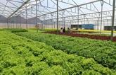 Agriculture Hub, un évènement important du secteur agricole du VN