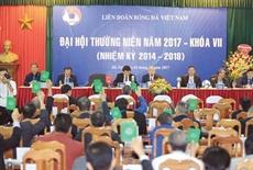 La FIFA enverra un observateur au VIIIe Congrès de la Fédération de football du Vietnam