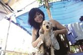 Sài Gon Time, un toit pour les animaux abandonnés