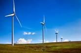 Le groupe Centerlink Holdings investit pour construire un parc éolien à Nghê An