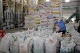 2017: une bonne année pour les exportations nationales de riz