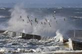 Tempête Carmen : le vent souffle sur la Corse après l'Hexagone