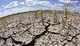 Causes majeures de la faim et de la pauvreté en Afrique