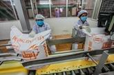 Commerce : les échanges entre le Vietnam et l'Inde en forte hausse en 11 mois