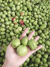 Quoi manger à Yên Bái ?
