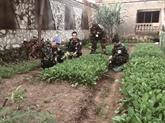 À Bangui, un potager des soldats vietnamiens