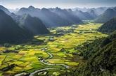 Lancement dun concours de photos sur des patrimoines vietnamiens
