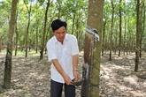 Le groupe VRG s'oriente vers le développement durable