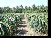 Le Vietnam cible 40 milliards de dollars dégagés des exportations