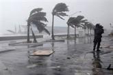 Tempêtes : 200 millions d'euros de dégâts pour la France, selon une estimation provisoire